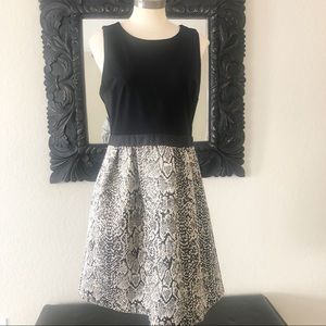 Donna Rico: snake skin fit and flare dress